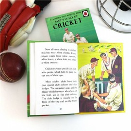 Children's Personalised Ladybird Cricket Book